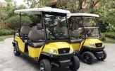 Xe điện du lịch VN Electric Car gồm những dòng nào?
