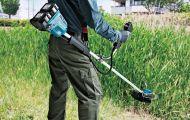 Những mẫu máy cắt cỏ cho diện tích vườn nhỏ chất lượng nhất hiện nay