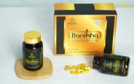 Nguồn gốc, công dụng của đông trùng hạ thảo Banikha