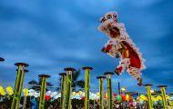 Đà Nẵng: Lễ hội Lân sư rồng quốc tế hấp dẫn thu hút du khách dịp 2/9