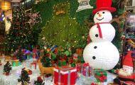 Đón Giáng sinh đáng nhớ cùng Ẩm thực Vân Hồ