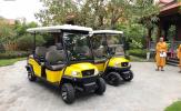 Xe điện VNE.CAR đã có mặt tại một số khu du lịch tâm linh nổi tiếng ở Việt Nam
