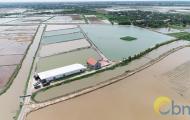 Thủy sản Bảo Minh - Địa chỉ cung cấp con giống thủy sản chất lượng trên cả nước
