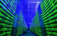 Bitcoin 'thủng' mốc 40.000 USD, sức ép gia tăng trên thị trường tiền số