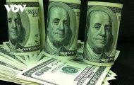 Giá USD hôm nay 19/11 biến động nhẹ
