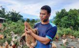 Quảng Ninh nhân rộng mô hình 'nông dân dạy nông dân'